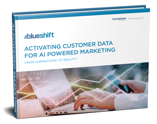 Activating Customer Data